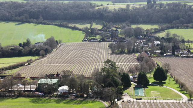 Hampshire's Hambledon Vineyard from the air