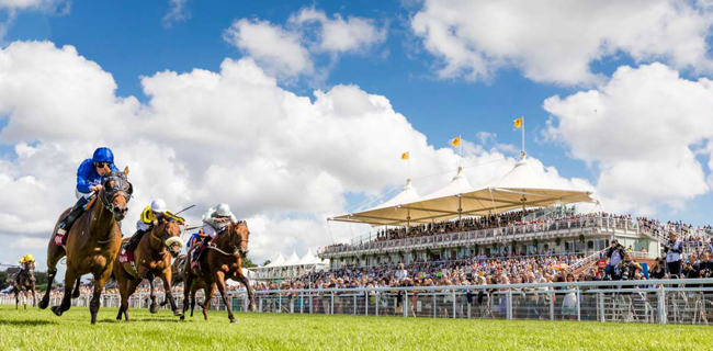 Horse Racing - Glorious Goodwood Festival - Day Two - Goodwood Racecourse